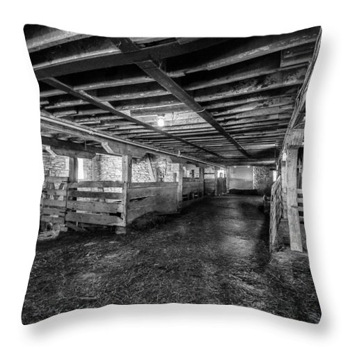 Jay Stockhaus Throw Pillow featuring the photograph Inside The Barn by Jay Stockhaus