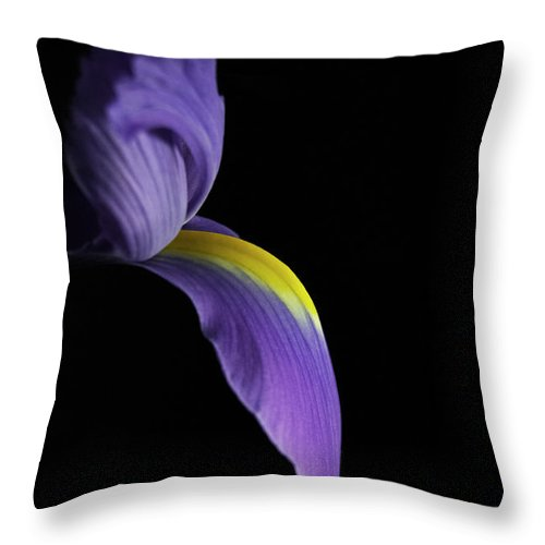 Iris Throw Pillow featuring the photograph Iris by Elsa Marie Santoro