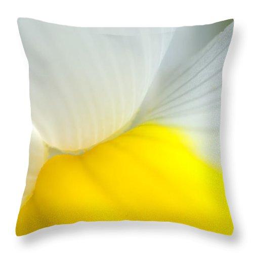 Iris Throw Pillow featuring the photograph Iris by Silke Magino