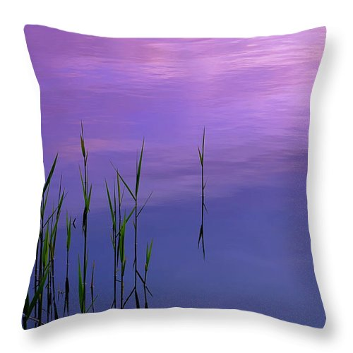 Throw Pillow featuring the photograph Lake Illmensee by Silke Magino