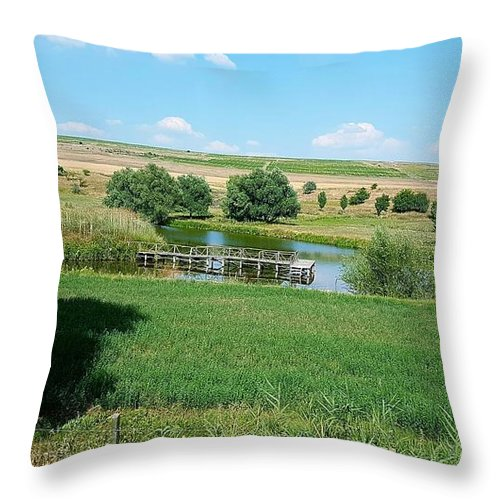 Lake Throw Pillow featuring the photograph Lake by Mihai Bardan