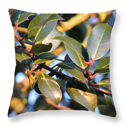 Leaves Throw Pillow featuring the photograph Leaves by Ernestas Jurginauskis