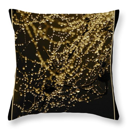 Black And Gold Throw Pillow featuring the photograph Let Your Light Shine by Carol Groenen