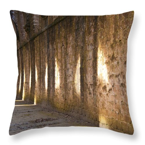 Castle Throw Pillow featuring the photograph Light And Shadows by Svetlana Sewell