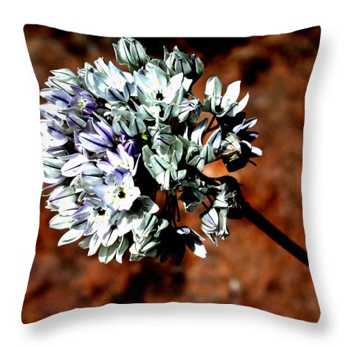 Throw Pillow featuring the photograph Lilly Of The Nile by Joel Rubin