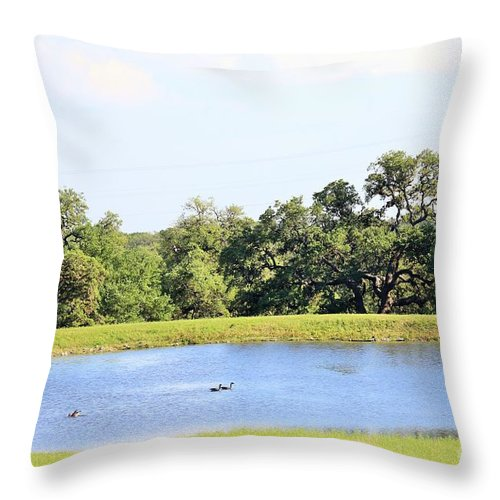 Throw Pillow featuring the photograph M R Ducks by Jeff Downs
