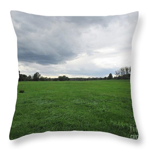 Meadow Throw Pillow featuring the photograph Meadow Near Coswig by Chani Demuijlder