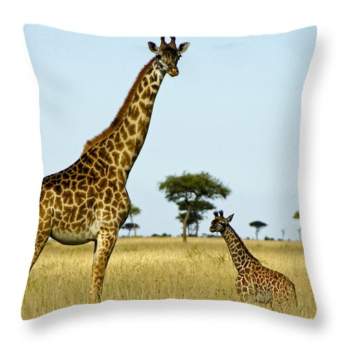 Africa Throw Pillow featuring the photograph Meet My Little One by Michele Burgess