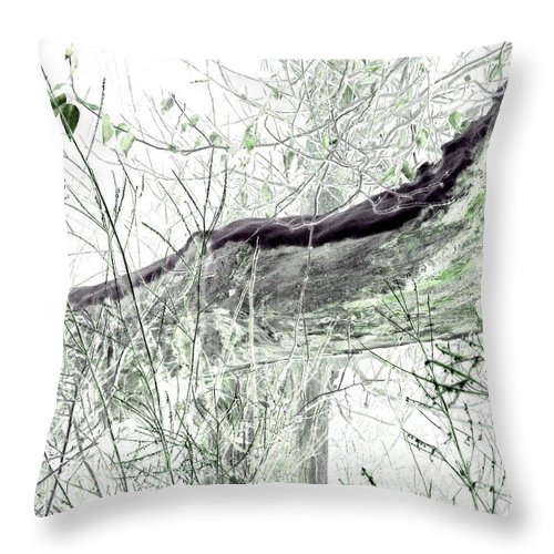 Forest Throw Pillow featuring the digital art Misty Morn by Will Borden