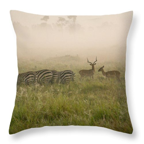 Africa Throw Pillow featuring the photograph Misty Morning On The Savannah by Michele Burgess