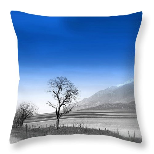 Misty Tree Throw Pillow featuring the photograph Misty Tree by Susanne Van Hulst