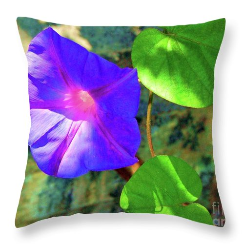 Morning Glory Throw Pillow featuring the photograph Morning Glory by Debbi Granruth