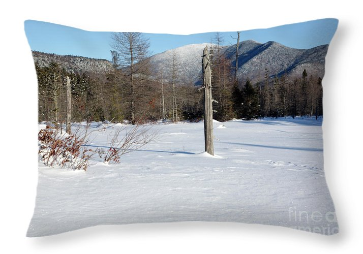 White Mountain National Forest Throw Pillow featuring the photograph Mount Carrigain - White Mountains New Hampshire Usa by Erin Paul Donovan