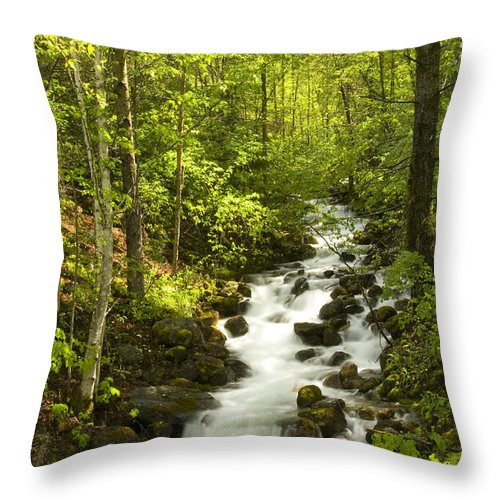 Stream Throw Pillow featuring the photograph Mountain Cascade by Idaho Scenic Images Linda Lantzy