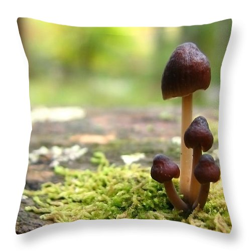 Macro Throw Pillow featuring the photograph Mushroom Cluster by Todd Blanchard