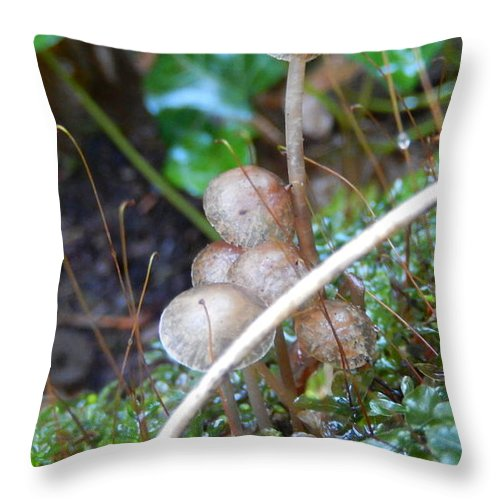 Mushrooms Throw Pillow featuring the photograph Mushrooms by Eddie G