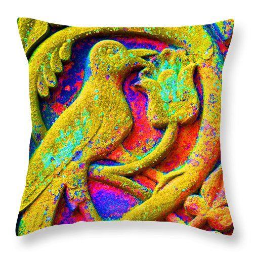 Detail Cross Throw Pillow featuring the photograph Mythical Bird. by Stan Pritchard