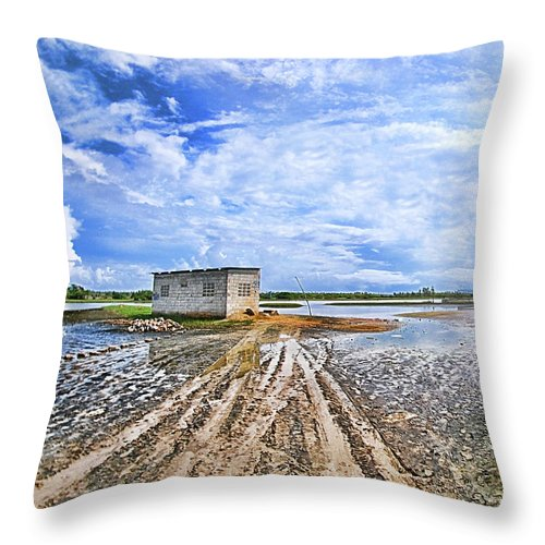 Cuare Throw Pillow featuring the photograph Natural Reserve Of Cuare by Galeria Trompiz