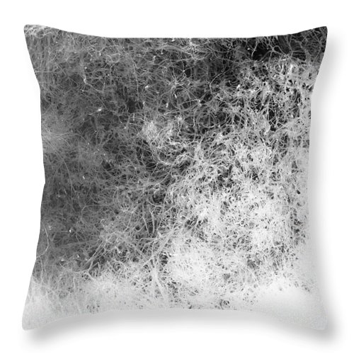 Abstract Throw Pillow featuring the photograph Nature Abstract by Gaspar Avila
