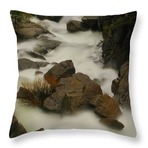 Nature Throw Pillow featuring the photograph Nature by Catherine Lau