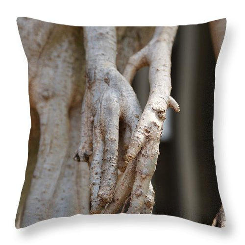 Praying Hands Throw Pillow featuring the photograph Nature by Shelley Jones