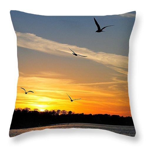 Lake Throw Pillow featuring the photograph November Sunset by Frozen in Time Fine Art Photography