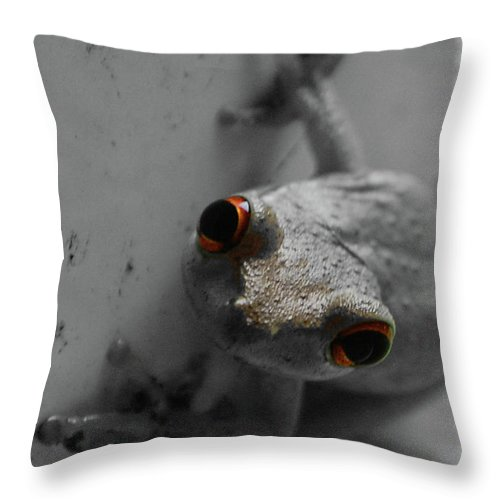 Frog Throw Pillow featuring the digital art Ogling Amphibian by DigiArt Diaries by Vicky B Fuller