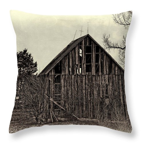 Old Throw Pillow featuring the photograph Old Days by Theresa Campbell