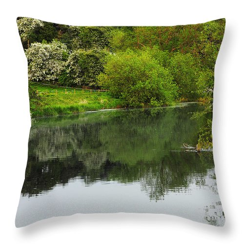 Countryside Throw Pillow featuring the photograph On The Lake by Svetlana Sewell