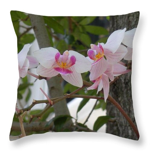 Throw Pillow featuring the photograph Orchid Bunch by Maria Bonnier-Perez