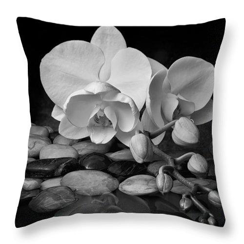 Arrangement Throw Pillow featuring the photograph Orchid - Sensuous Virtue by Tom Mc Nemar