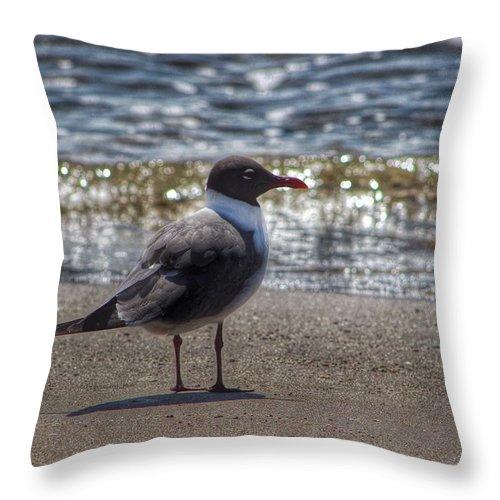 Padre Island National Seashore Throw Pillow featuring the photograph Padre Island National Seashore by Linda Anderson