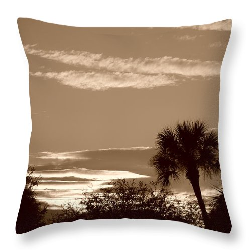Sepia Throw Pillow featuring the photograph Palms In The Clouds by Rob Hans