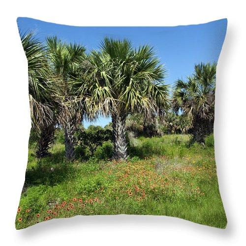 Florida Throw Pillow featuring the photograph Pelican Island In Florida by Allan Hughes