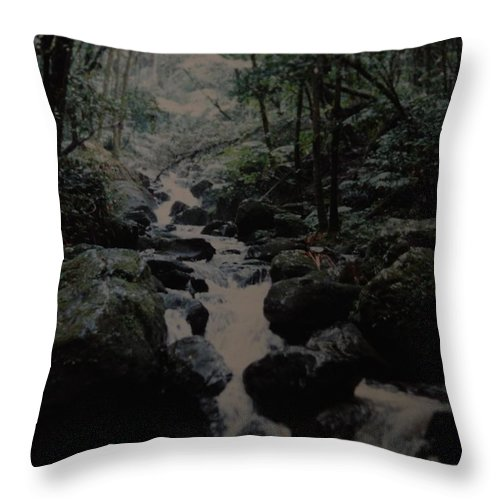 Water Throw Pillow featuring the photograph Puerto Rico Water by Rob Hans