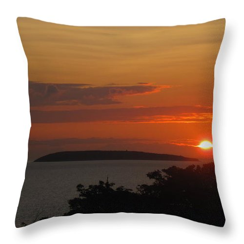 Islands Throw Pillow featuring the photograph Puffin Island by Christopher Rowlands