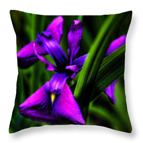 Flowers Throw Pillow featuring the photograph Purple Flower by David Patterson