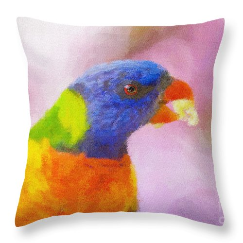 Rainbow Lorikeet Throw Pillow featuring the photograph Rainbow Lorikeet by Sheila Smart Fine Art Photography