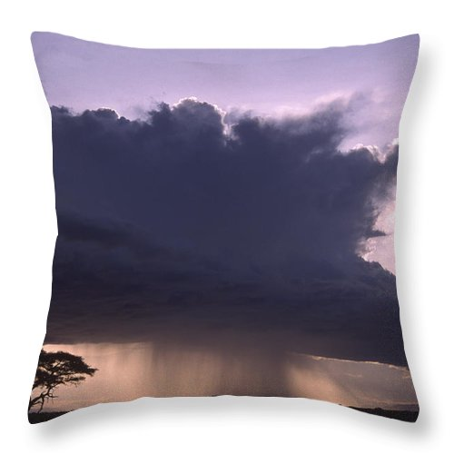 Africa Throw Pillow featuring the photograph Rainstorm At Amboseli by Michele Burgess
