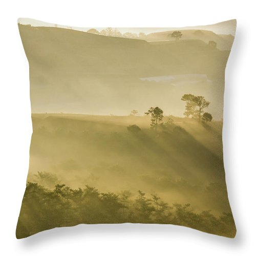 Ray Throw Pillow featuring the photograph Ray by Duc Truc Nguyen