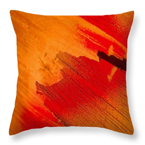 Red Throw Pillow featuring the photograph Red Alert by Michael Mogensen