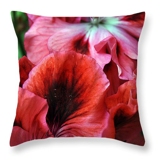 Clay Throw Pillow featuring the photograph Red Floral by Clayton Bruster