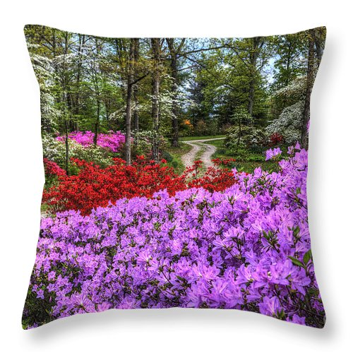 Fine Art Throw Pillow featuring the photograph Road With Flowers by Larry Braun