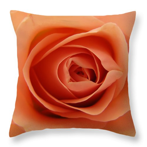 Rose Throw Pillow featuring the photograph Rose by Daniel Csoka