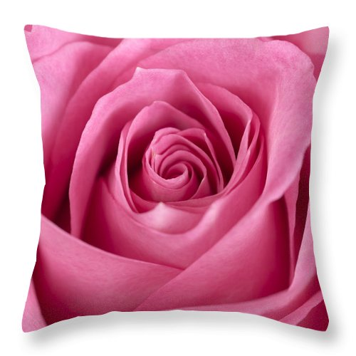 Rose Throw Pillow featuring the photograph Rose by Jessica Wakefield