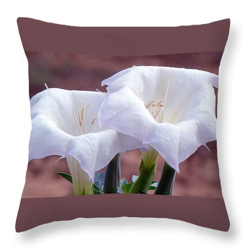 Utah Throw Pillow featuring the photograph Sacred Datura Photograph by Kimberly Walker