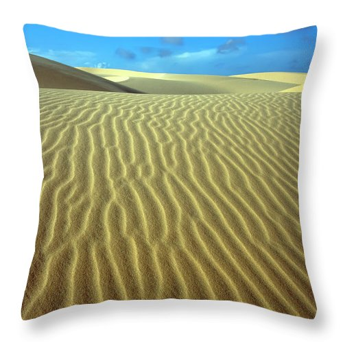Sand Throw Pillow featuring the photograph Sandy Desert by MotHaiBaPhoto Prints