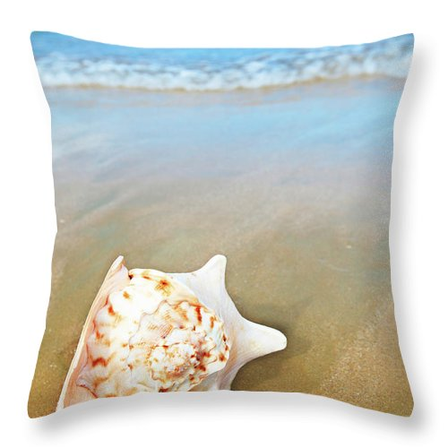 Seascape Throw Pillow featuring the photograph Seashell by MotHaiBaPhoto Prints