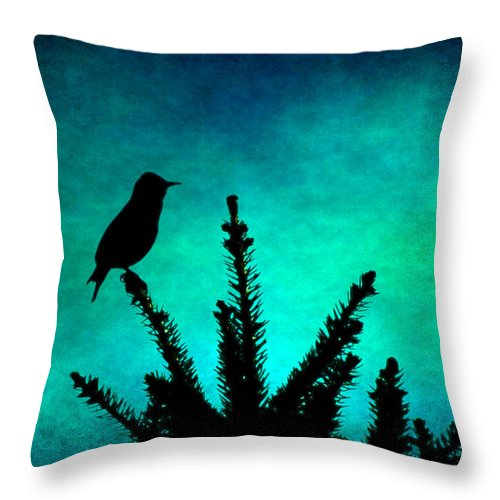 Throw Pillow featuring the photograph Silhouette Blues by Sylvia Coomes