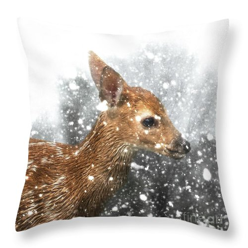 Fawn Throw Pillow featuring the photograph Snowing by Lisa Hurylovich